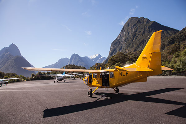 Milford Sound + Brief Landing $280pp (was $515)